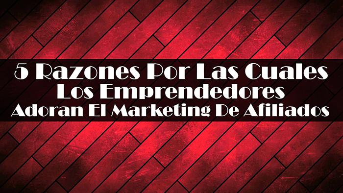 5 Razones Por Las Cuales Los Emprendedores Adoran El Marketing De Afiliados